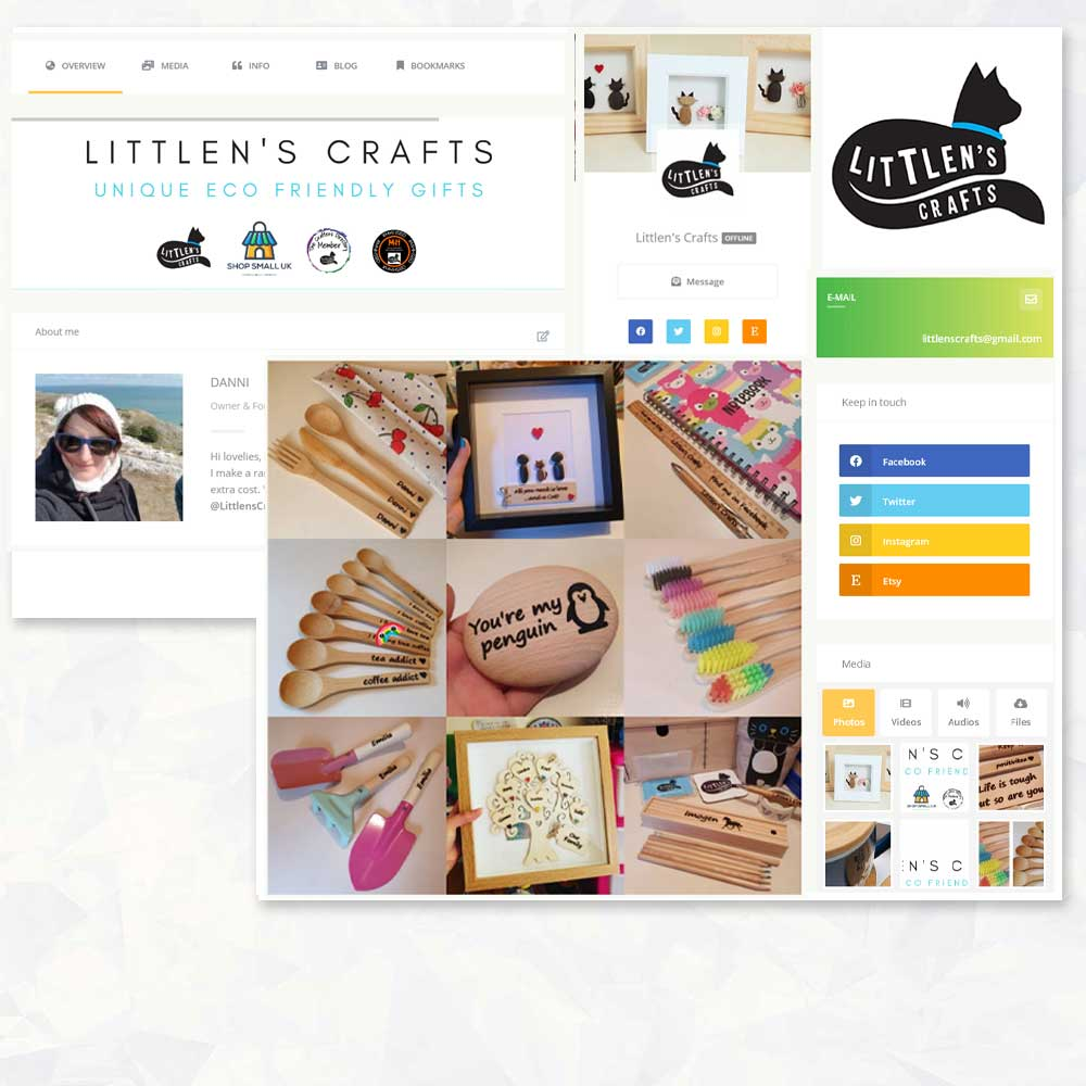 littens featured