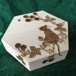 hex box 1